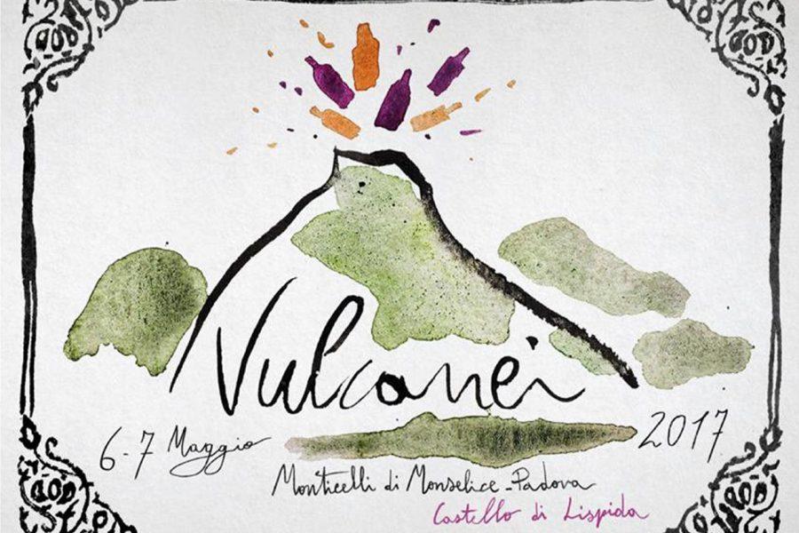 Manifesto Vulcanei 2017