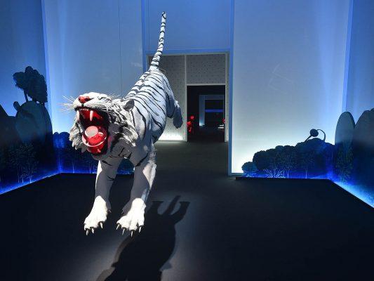 Robert Wilson, illy, tigre