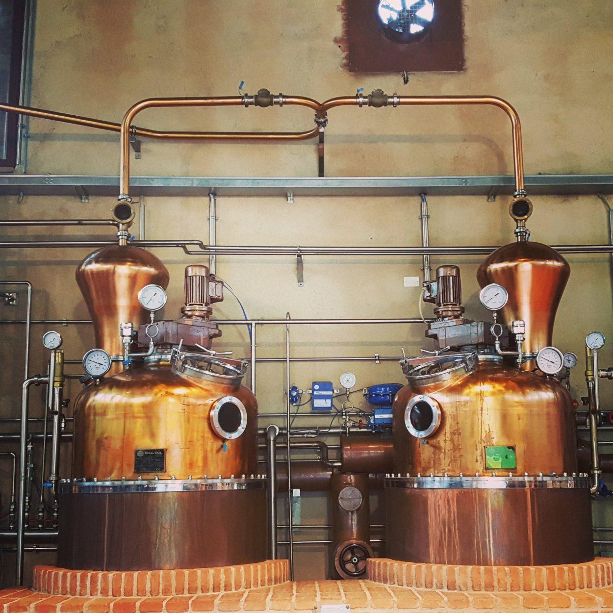 Grapperie aperte, distilleria